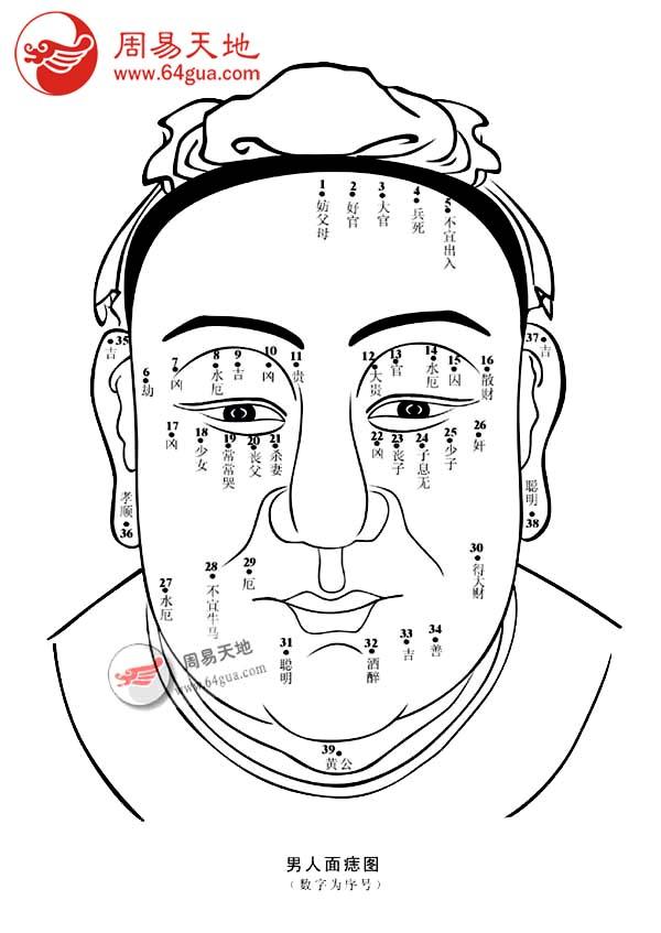 痣的位置在(1)的男性,妨碍 ... 痣相图解,,面部痣相图解(第6页)_点力图库 网站导航收藏